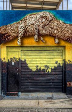 Melbourne Street Art over a garage