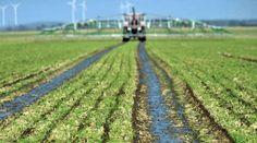 Imu sui terreni agricoli: non si paga a San Giustino