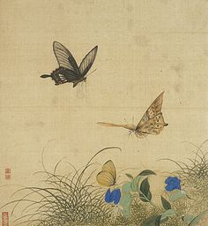 Zhu Ruining, Album of Flowers and Insects, Qing dynasty, 1644-1911, Album leaf, Ink and color on paper,