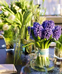 Love how the hyacinths are tied and stand.