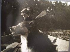 "Empress Alexandra Feodorovna of Russia with Nicholas' collie getting into the shot.  ""AL"""