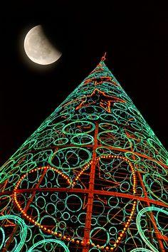 MADRID / Árbol de Navidad de la Puerta del Sol (07/12/2012) by Saúl Tuñon Loureda, via Flickr.. AMO AMO ESPANA