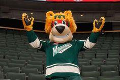 Nordy, the mascot of the Minnesota Wild Minnesota North Stars, Minnesota Wild, Wild Hockey, Wild North, National Hockey League, Masks, Preschool, Canada, Ice