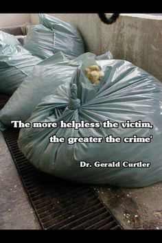 Egg industry abuse - Previous pinner wrote: Male chicks are useless to the egg industry. They are bagged alive and thrown out like garbage or ground up alive within days of hatching. Cane Corso, Sphynx, Chinchilla, Vegan Quotes, Vegan Memes, Why Vegan, Stop Animal Cruelty, Vegan Animals, Factory Farming