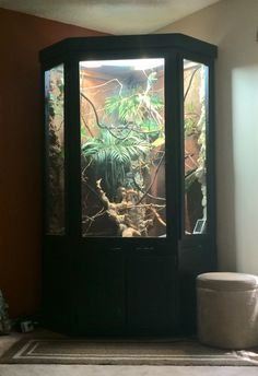 Large Reptile Enclosure Https Www Facebook Com Pages Hp