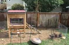 Blogger Jason Price recounts the ups and downs of his backyard chicken rearing adventure.