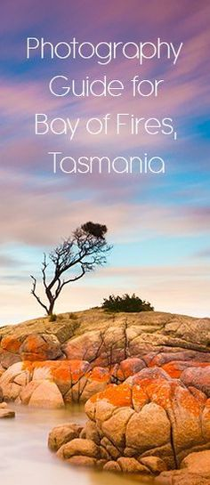 All you need to know about photographing the Bay of Fires, Tasmania.