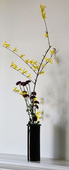 Ikebana April 1, 2011 by clw_and_dog, via Flickr