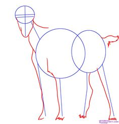 how to draw a billy goat step 2