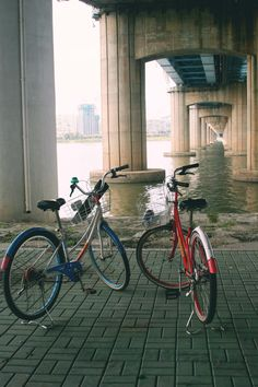 Let's go to... the Han River and rent bikes! - Hedgers Abroad