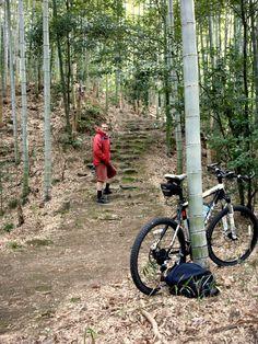 Biking in the bush.