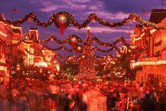 Disney World, Orlando, christmas lights display