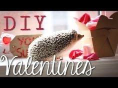 DIY VALENTINE'S DAY - GIFTS/ VALENTINES/ CANDYGRAM/ FAVOURS