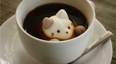 Esponjitas con forma de gato para el latte más adorable.