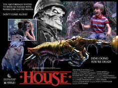 House - Roger Cobb is a Vietnam vet whose career as a horror novelist has taken a turn for the worse when his son Jimmy mysteriously disappears while visiting his aunt's house. Roger's search for Jimmy destroys his marriage and his writing career. The sudden death of his aunt brings Roger back to the house where his nightmares began.