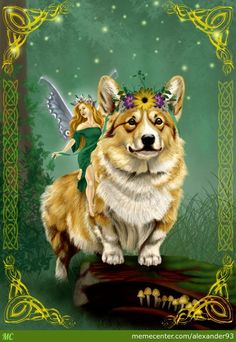 not only are Corgi's AMAZING creatures, they're also part of Irish folklore they happen to be associated with one of my favorite things- Faeries! I love my little corgi Corgi Husky, Corgi Puppies, Corgi Pictures, Fairy Queen, Cute Corgi, Pembroke Welsh Corgi, Faeries, Puppy Love, Dog Cat