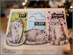 handgemachte Geburtstagskarte mit Katzelkraft und Copic | fraeulein-nebel.org Eat Sleep, Copic, Cardmaking, Handmade Birthday Cards, Mists, Xmas Cards, Card Making