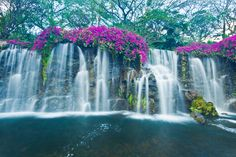 Maui, Hawaii | Around The World In 20 SummerPictures