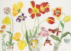 Elizabeth Blackadder - Tulips and Ranunculus,  1999