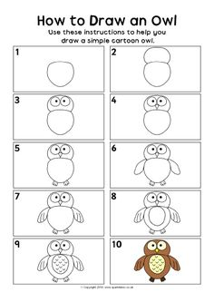How to Draw an Owl Instruction Sheet (SB11635) - SparkleBox