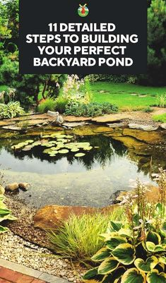 How to Build a Beautiful Backyard Pond in 11 Steps