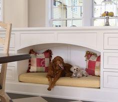 Meu bicho, minha casa – Encontrando o lugar certo para os acessórios do seu pet na decoração