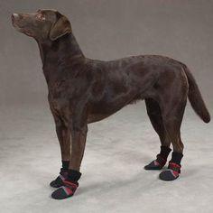 539e27a8c831 Guardian Gear Fleece Lined Dog Boots - Red