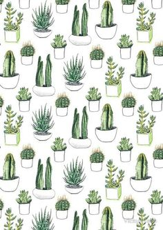 Image de cactus, plants, and green