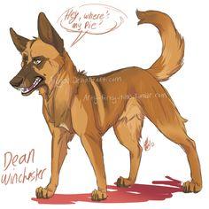 spn dogs: Dean by Aibyou.deviantart.com on @deviantART