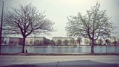 Oster Sogade to Fish Island (Copenhagen) by hotcommodity, via Flickr...setting of Maybe Baby