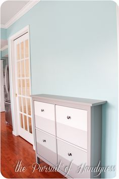 Ikea Hemnes Shoe Cabinet (this link is for the paint job).  Seems like a handy low profile piece that could go lots of places...