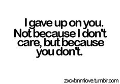 i gave up on you