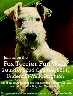 October 2011 - we have these walks twice a year, organised in conjunction with foreverfoxed.com