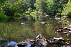 Line Creek, Peachtree City, Ga