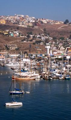 Ensenada is backed by small mountain ranges. Proximity to the Pacific and a warm Mediterranean latitude create mild year-round weather. The rainy season during the winter is short and the area is prone to prolonged droughts, which can threaten its grape harvests. The National Park Constitution of 1857 created the Sierra de Juarez and San Pedro Martir National Parks, which maintain one of the best astronomical observatories in the country.
