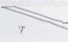 Loneliness by Ovidiu Caragea on 500px