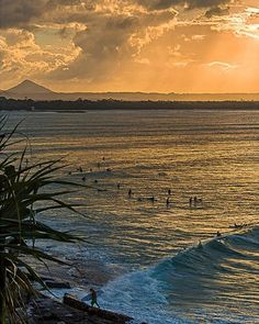 Perfect waves rolling into #Noosa National Park at #sunset. Pic: @danhsc782 (IG) #VisitSunshineCoast @Queensland  www.parkmyvan.com.au #ParkMyVan #Australia #Travel #RoadTrip #Backpacking #VanHire #CaravanHire