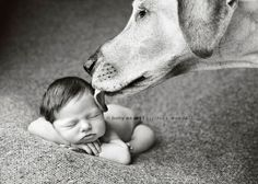 babies and dogs. My two favorite things:)