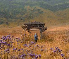 Padang Savana, Taman Nasional Bromo Tengger Semeru, Jawa Timur. Salah satu tempat menarik di Kawasan Gunung Bromo.  Photo by : @debumalam  www.tukangjalan.com  #tukangjalan #tukang_jalan #tukangjalantrip #pesonaindonesia #explorenusantara #indonesia #debumalam #bromo #padangsavanabromo #bukitteletabis #kawahbromo #traveling #travelingram #travelphotography #instagram #instago #instadaily #liburan #jalan2man #vacations