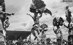Danzantes de la Pluma en Cd. de Oaxaca , Oaxaca Mexico ,,,, 3