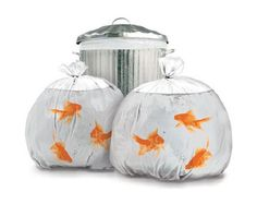 Goldfish Garbage Bags
