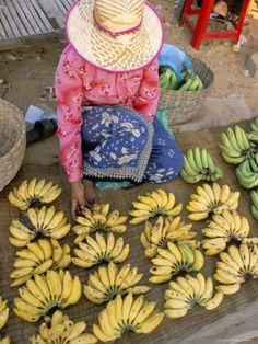 Chong Kneas Village, Tonle Sap Lake, Siem Reap, Cambodia,