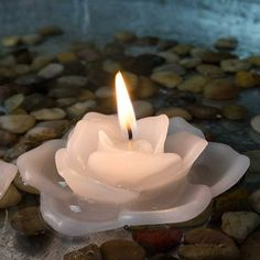 Floating Rose Flower Candle with Traditional Wick, 3 inch, WHITE – Floating Candles İdeas. Pool Candles, Floating Candles Wedding, Flameless Candles, Birthday Candles, Wicked, Christmas Decorations, Traditional, Rose, Flowers