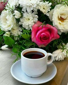 Good morning sister and yours, have a nice Monday and a Lovely week, God bless 🌹💖☕🐇🐇🐤🐡 Brown Coffee, Coffee Love, Coffee Art, Coffee Break, Coffee Cups, Tea Cups, Mini Desserts, Montreal Botanical Garden, Good Morning Coffee