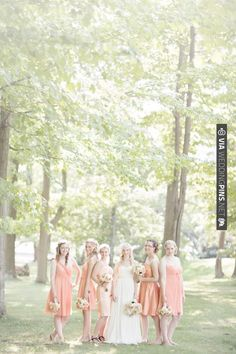 peach bridesmaid dresses | CHECK OUT MORE IDEAS AT WEDDINGPINS.NET | #bridesmaids