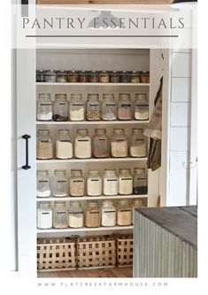 Pantry Essentials for a Well Stocked Kitchen Walk in kitchen pantry organized with jars that holds spices and herbs. Pantry Essentials for a Well Stocked Kitchen Walk in kitchen pantry organized with jars that holds spices and herbs. Kitchen Pantry Design, Kitchen Pantry Cabinets, Kitchen Storage, Kitchen Decor, Diy Kitchen, Kitchen Ideas, Kitchen Jars, Decorating Kitchen, Pantry Storage