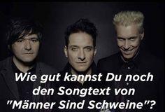 """Wie gut kannst Du noch den Songtext von """"Männer Sind Schweine"""""""
