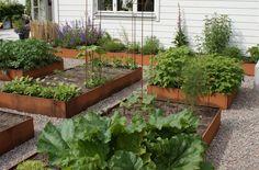 De store aflange plantekasser med tværstivere er Lands mest solgte højbede. Aflange højbede er oplagte til intensiv dyrkning i køkkenhaven. Siderne sættes sammen og langsiderne forbindes til den modsatte langside med medfølgende tværstivere. De fås i råjern der ruster og galvaniseret jern. Højbedene er 25 cm i højden eller 50 cm (stablet) i følgende størrelser: 40x160cm 60x160cm 80x160cm 120x160cm 40x240cm 60x240cm 80x240cm 120x240cm Fås også med sneglehegn til sikring mod dræbersne...