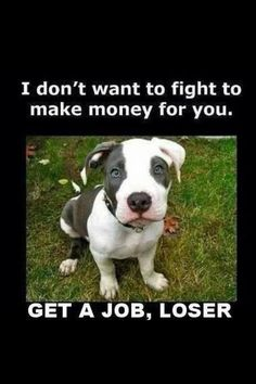 i love pit bulls, they just have a bad rep:(