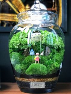 Panda Art Café – Home Decoration Terrarium Diy, Marimo Moss Ball Terrarium, Terrarium Scene, Art Café, Room Deco, Panda Art, Fairy Houses, Studio Ghibli, Totoro